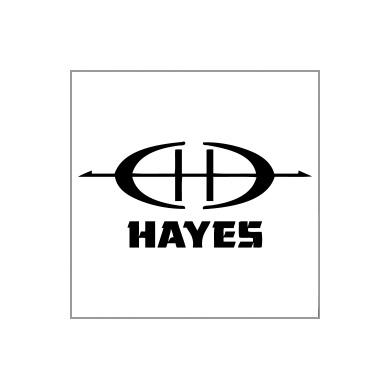 Wally Hayes